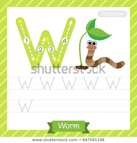 Flashcard alphabet W is for worm Stock photo © bluering