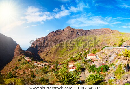 Masca, small village at Tenerife island Stock photo © tuulijumala