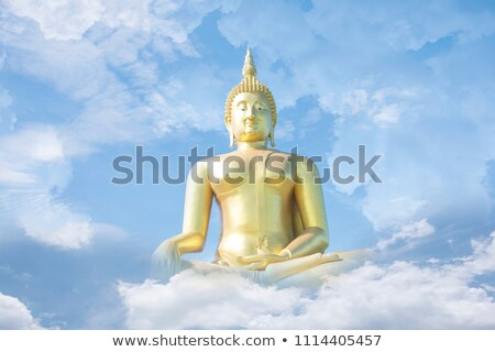 Buddha hemel heldere gras macht god Stockfoto © rufous