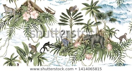 обезьяны Тропический остров иллюстрация лес морем песок Сток-фото © adrenalina
