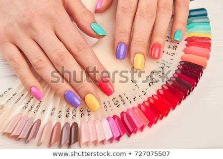 Unterschiedlich farbenreich Nägel Palette Maniküre Frauen Stock foto © vlad_star