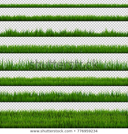 Stock photo: Green Grass Border Big Collection