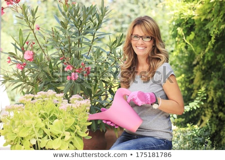 Mature woman watering plants Stock photo © IS2