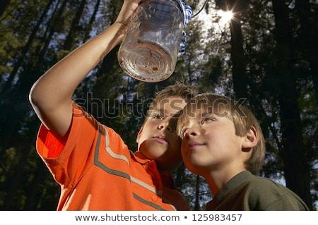 Kid мальчика насекомое банку науки иллюстрация Сток-фото © lenm