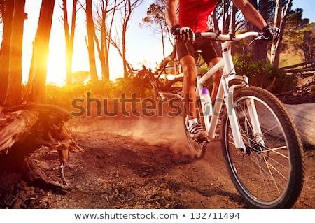 mountain biking man riding in woods and mountains stock photo © blasbike