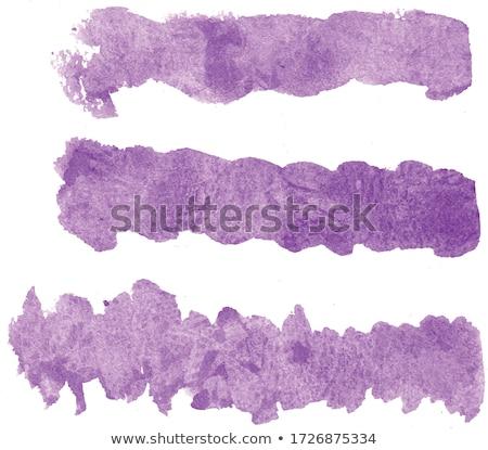 紫外線 水彩画 セット 手 描いた ストックフォト © Sonya_illustrations