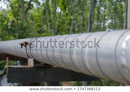 гальванизированный лист металл копия пространства Сток-фото © vilevi