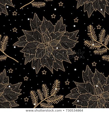 抽象的な 冬 黒白 フローラル 雪 ストックフォト © Terriana