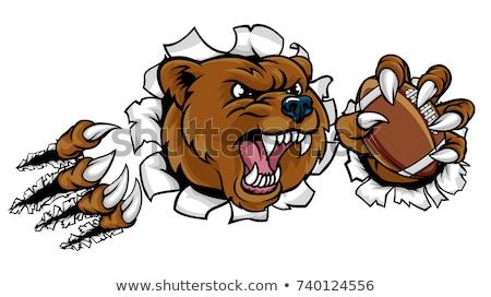 Bear American Football Ball Breaking Background Stock photo © Krisdog