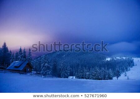 コテージ · 家 · 風景 · 画像 · 木 - ストックフォト © bluering