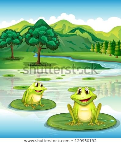 Dos verde estanque escena ilustración paisaje Foto stock © colematt