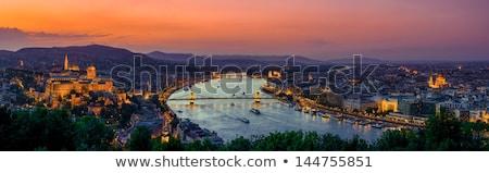 ブダペスト · ハンガリー · チェーン · 橋 · ロイヤル · 宮殿 - ストックフォト © givaga