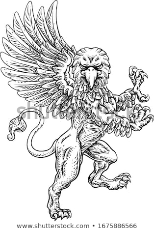 грифон голову сторона талисман икона иллюстрация Сток-фото © patrimonio