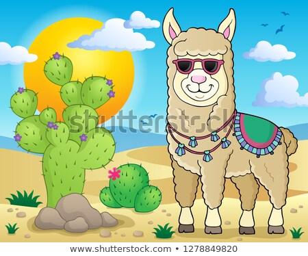 Lama güneş gözlüğü görüntü mutlu güneş sanat Stok fotoğraf © clairev