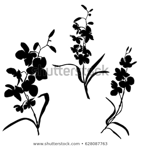 silhouette flowers with leaves stock photo © odina222