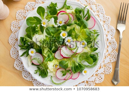 Spring salad with wild chickweed, bedstraw and yarrow Stock photo © madeleine_steinbach