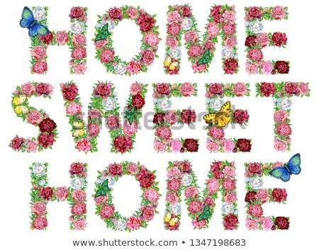 Word SWEET of watercolor peonies flowers and butterflies Stock photo © Natalia_1947