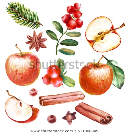 Watercolor cinnamon and red apples on red background Stock photo © ConceptCafe