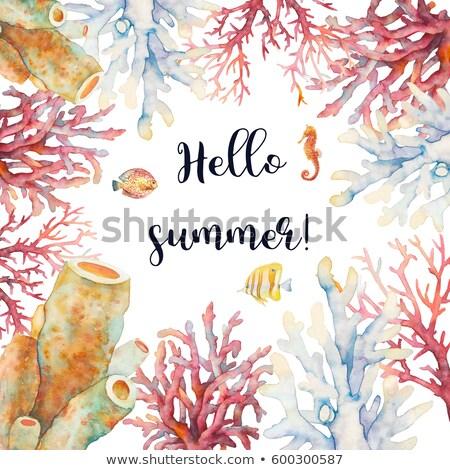 Hello nyár kártya trópusi korallzátony hal Stock fotó © cienpies