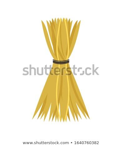 Feno fio colheita temporada ícone Foto stock © robuart