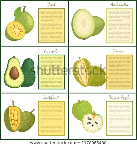 vegetarisch · eten · posters · ingesteld · platen · groenten · tekst - stockfoto © robuart
