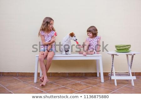 Szczęśliwy znajomych podział arbuz lata piknik Zdjęcia stock © dolgachov
