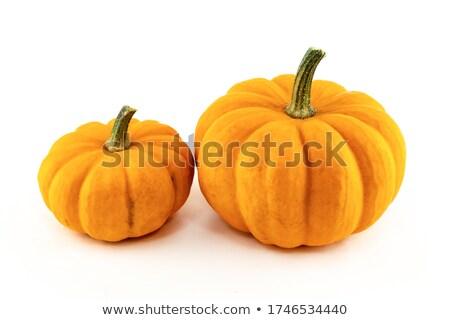 Csoport érett narancs nagy kicsi tökök Stock fotó © pressmaster