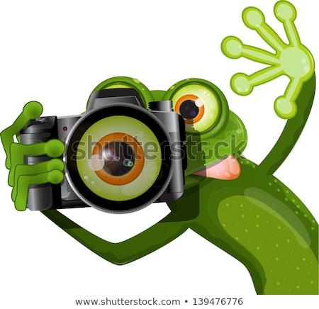 Câmera sapo saltando dslr ilustração 3d Foto stock © orla