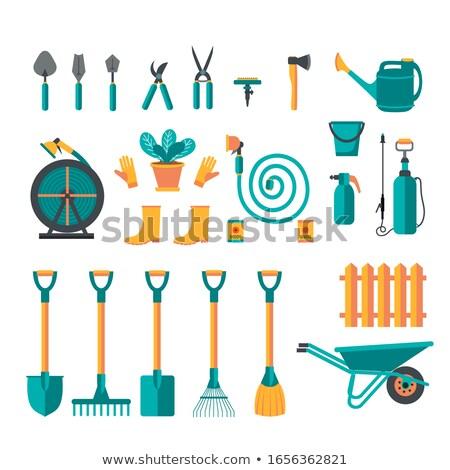Zestaw pojedyncze obiekty ogrodnictwo ilustracja kwiat charakter Zdjęcia stock © bluering