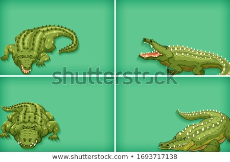 Background template design with plain color and crocodiles Stock photo © bluering