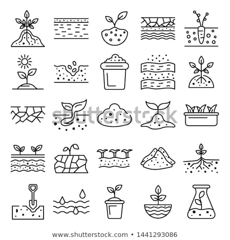 gardening stone icon set Stock photo © ayaxmr