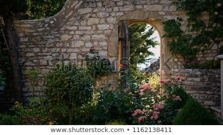 двери · трава · пути · изолированный · белый · карта - Сток-фото © backyardproductions