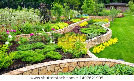 Nice garden stock photo © RazvanPhotography