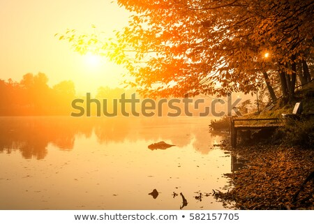 Wooden dock on autumn lake Stock photo © elenaphoto