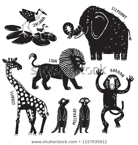 Stock photo: zoo stamps