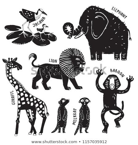 zoo stamps stock photo © glorcza