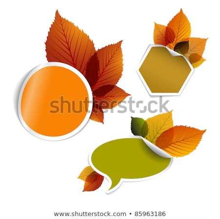 set of vector autumn discount tickets labels stamps stock photo © orson