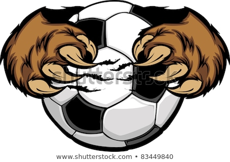 soccer ball with bear claws vector image stock photo © chromaco