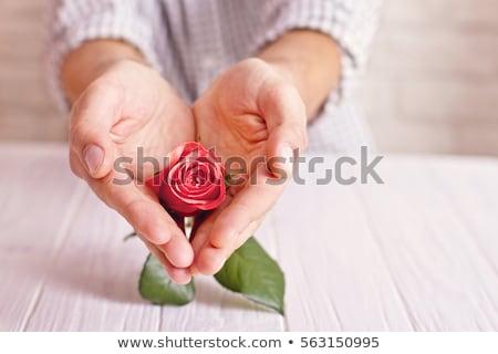 Foto d'archivio: Uomo · donna · rosa · segno · amore · faccia