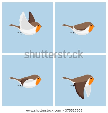 Flying Cartoon Bird Stock photo © indiwarm
