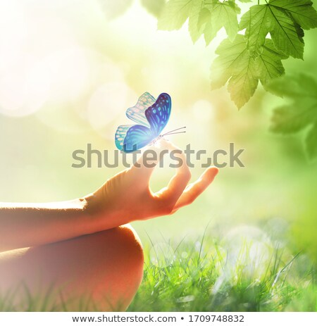 Peace and tranquility Stock photo © photography33