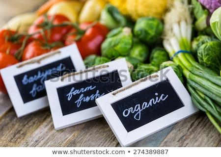 лук · растущий · синий · завода · банка · продовольствие - Сток-фото © byjenjen