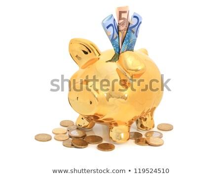 Europeu banco notas dourado porco Foto stock © pterwort