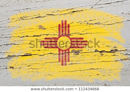 Vlag New Mexico grunge houten textuur nauwkeurig Stockfoto © vepar5