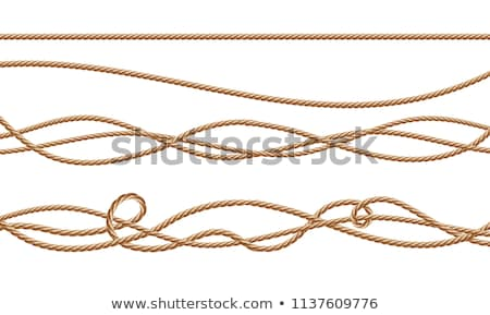 vector rope stock photo © wikki