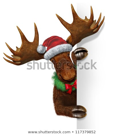 Christmas Moose Blank Sign Stock photo © Lightsource