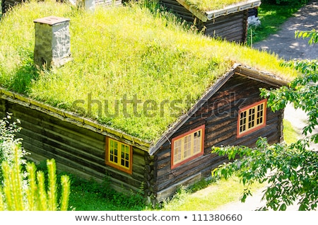 Shed with green roof Stock photo © Harlekino