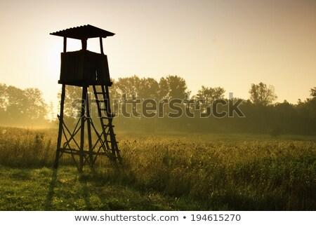 транзит · лагерь · Мир · войны · беженец · десять - Сток-фото © hofmeester