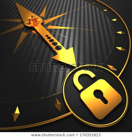 Golden Icon of Opened Padlock on Black Compass. Stock photo © tashatuvango