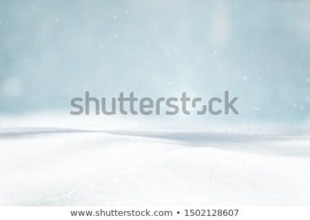 Noel kar dizayn yaprak mavi beyaz Stok fotoğraf © rioillustrator